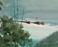 Noble Train of Artillery (close up of Ft. Ticonderoga)