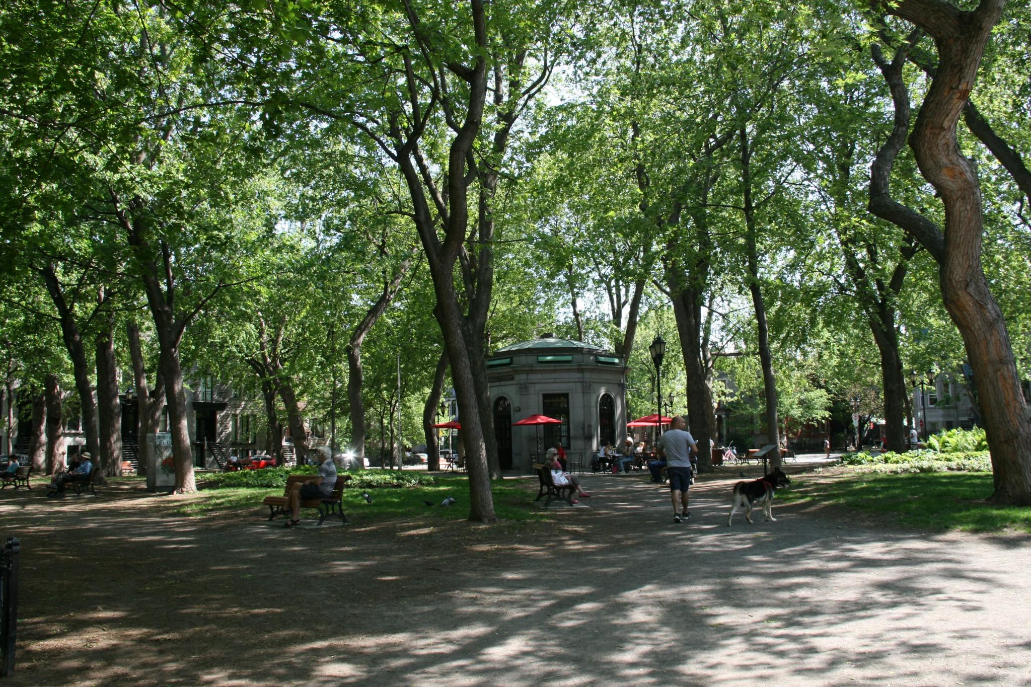Carré Saint-Louis à Montréal
