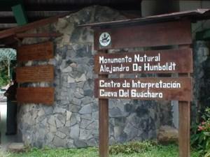 cueva del guacharo (5)