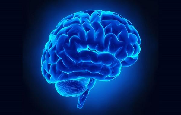 Día-Mundial-del-Cerebro