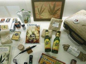 museo-de-cannabis-exhibicion