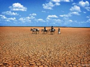 Desertificación y la Sequía