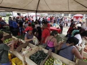 Feria-del-Campo-Soberano