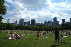 Central Park X