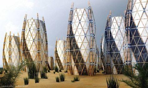 bamboo housing project in haiti