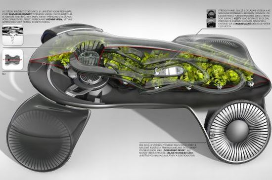 photosynthetic car 04