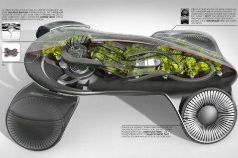 photosynthetic car 04