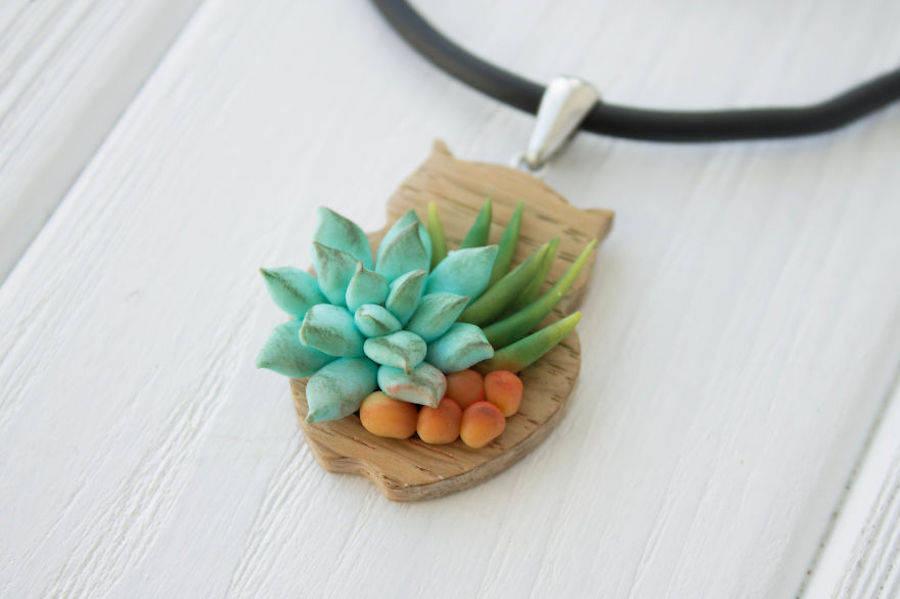 succulents-9-900x599