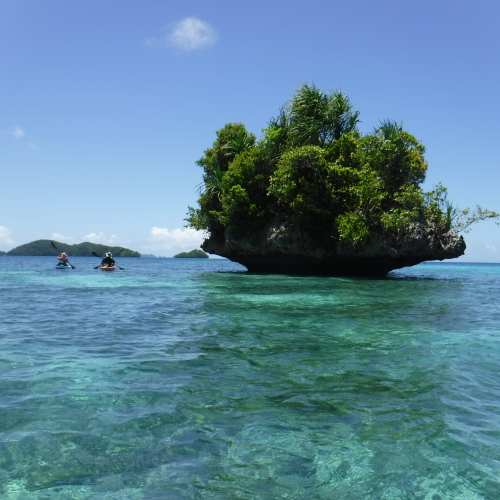 Palau: Small Foliated Island