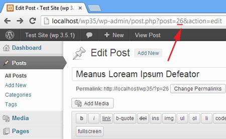 finding-post-id-wordpress