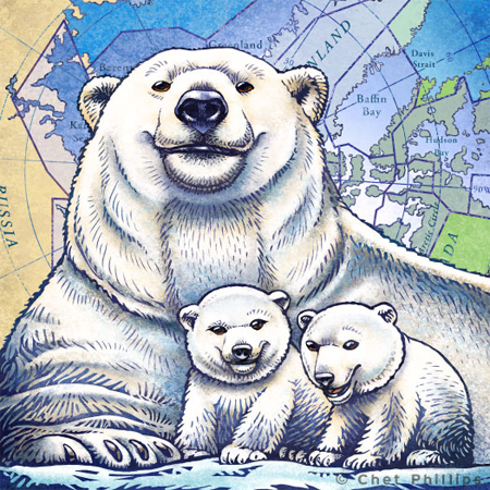 polarbearshpb