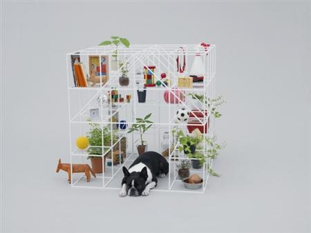 architecture-for-dogs-2