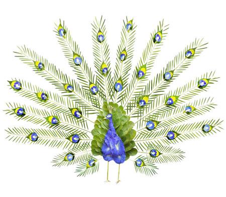 flower-birds-1