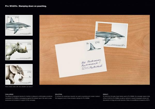 Pro-Wildlife-Campaign-640x4