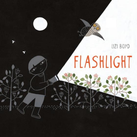 Flashlight by Lizi Boyd