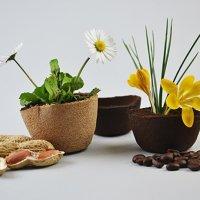 Agridust, il materiale biodegradabile ottenuto dagli scarti alimentari