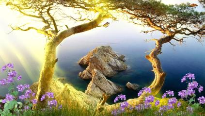 Beautiful Landscape Animated Wallpaper Preview