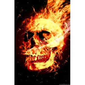 Cordial 203487 Gallery Skull Fire Wallpapers 1600x2442 H On Movie Drawing