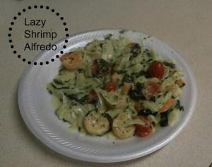 Skinny Shrimp Fettuccine Alfredo {lazygirl recipe}