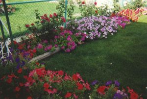 Awesome Additions to Help Make Your Garden More Wonderful