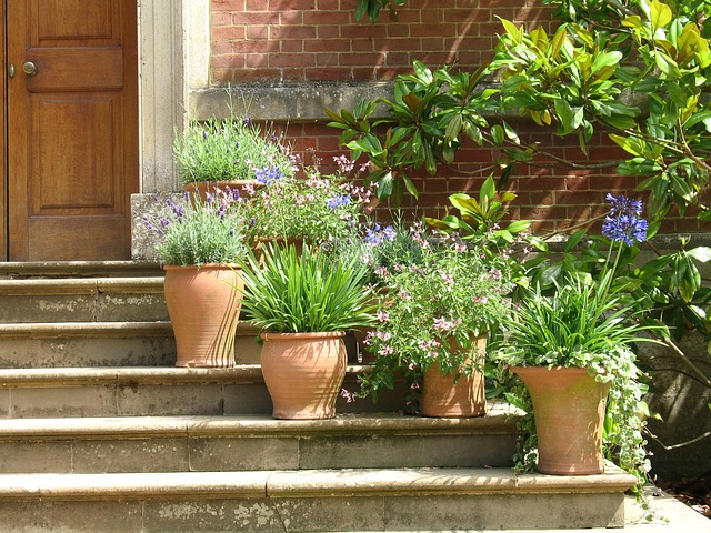 My Top Tips For Keeping Your Garden Looking Good Throughout The Winter
