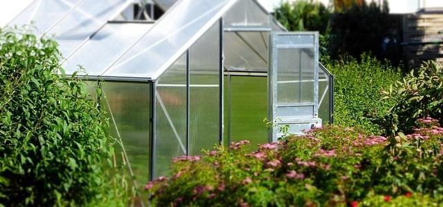 5 Great Outdoor Ideas That'll Transform Your Garden