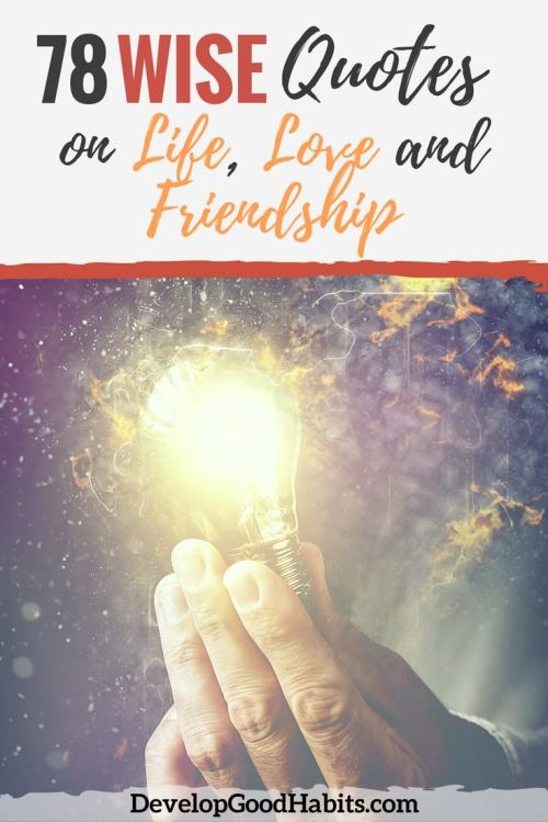 Medium Of Love And Friendship Quotes