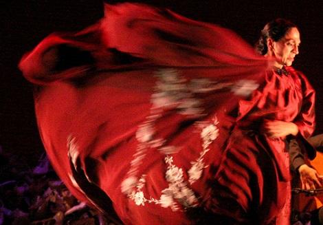 Todo preparado para celebrar el XVI Festival de Jerez