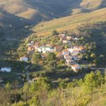 Pinofranqueado en el norte de Cáceres