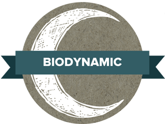 biodynamic-wine