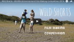 Get your Wild Shorts out! North Devon nature short film competition
