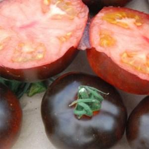 zwarte-tomaten2