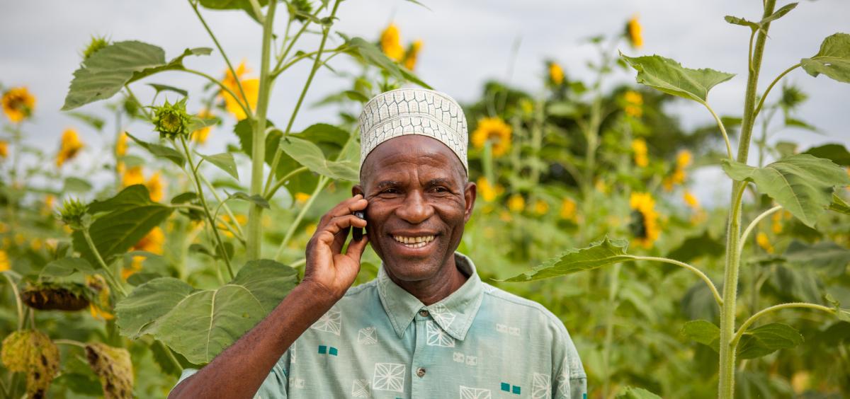 Liquid Telecom puts the spotlight on African innovation in new report