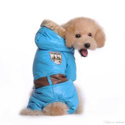 Small Crop Of Dog Winter Coat