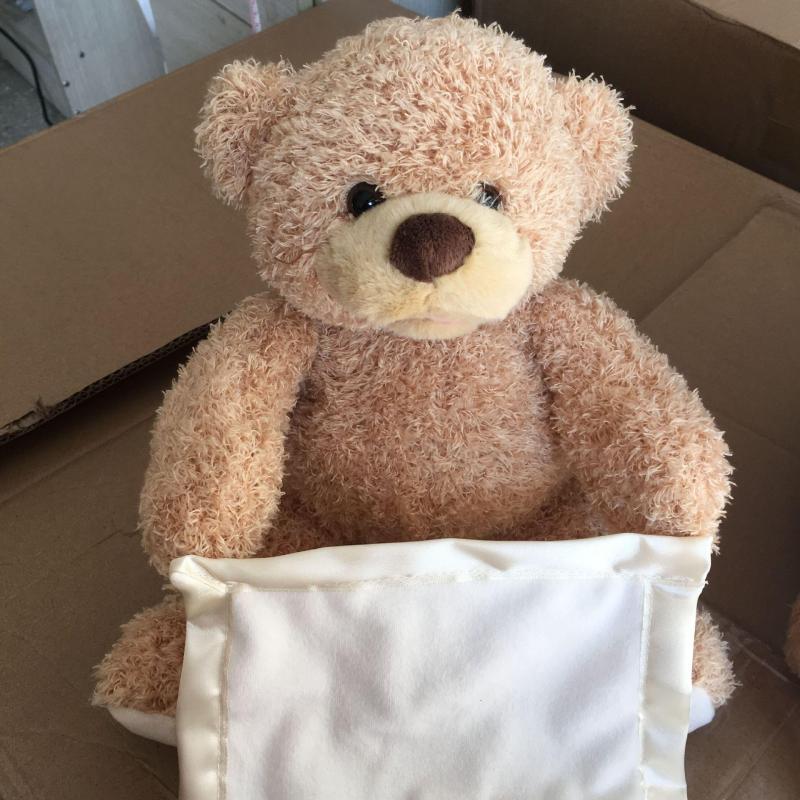 Large Of Peek A Boo Bear