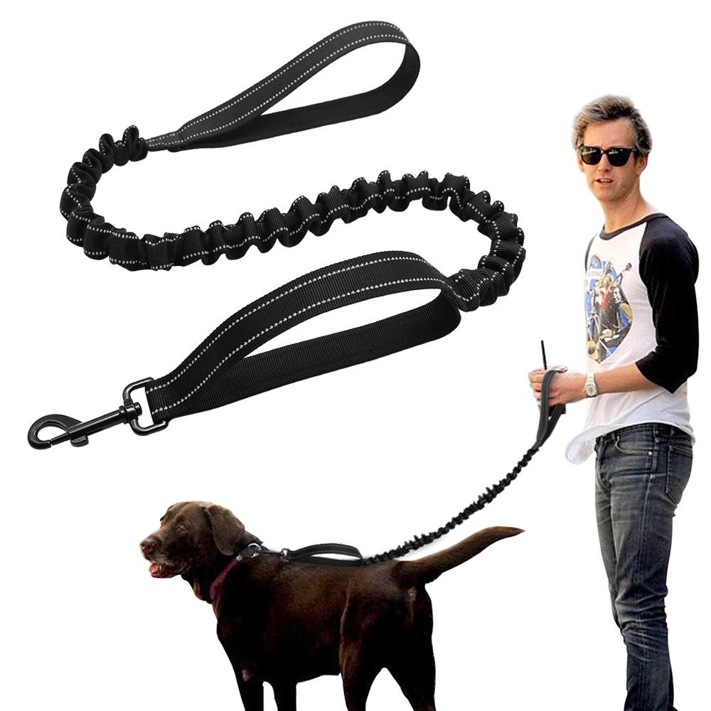 Fullsize Of Hands Free Dog Leash