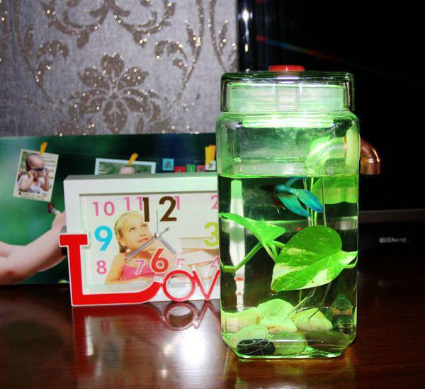 Drop shipping glass mini self cleaning fish aquarium fish tank wtih