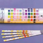 Glucose-Test-Strips