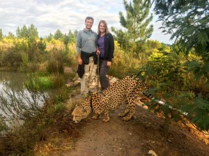 South Africa - Walking with Cheetahs