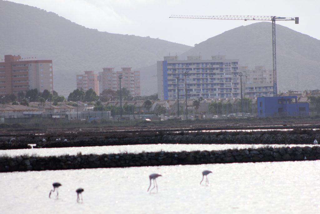 Un nuevo cinturón de cemento alrededor del Mar Menor
