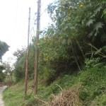 Roban aproximadamente 200 mts de cable de lineas telefonicas CANTV para vender el cobre dejando incomunidos seis sectores