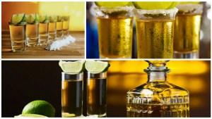 noticias-tequila