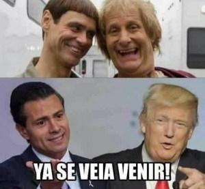 memes-del-muro-tondo-y-mas-tonto