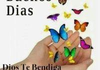 1db1e6e02f9014be9f39d41e238e0d5d--butterflies-ideas
