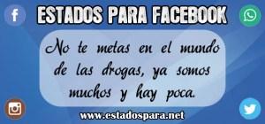 Estado-para-Facebook-Chistoso
