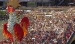 Carnaval Recife Galo