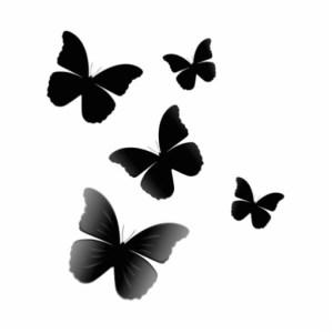 borboletas pretas