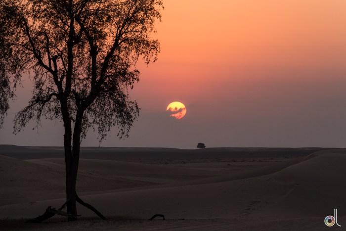 Coucher de soleil - Désert de Dubai