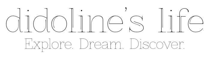 didolineslifelogowoskyline-white