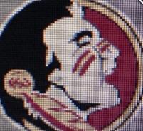 Florida State new logo?